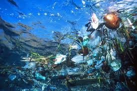 Marine Litter: not just an environmental threat but an economic catastrophe too