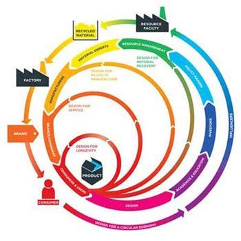 Circular Economy & Field Experiences