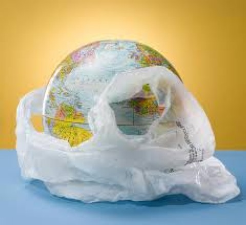 Plastics have become an integral part of the Earth's ecosystem!