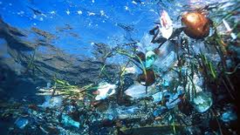 Marine Litter: not just an environmental threat but an economic catastrophe too