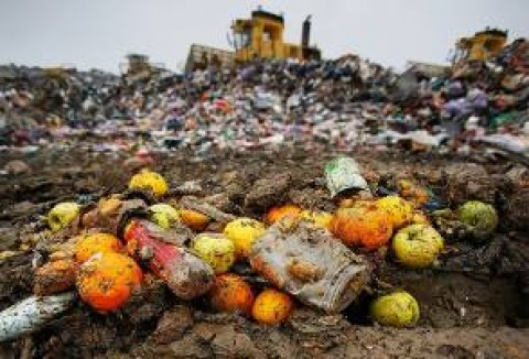 Italy promotes food waste prevention for supermarkets