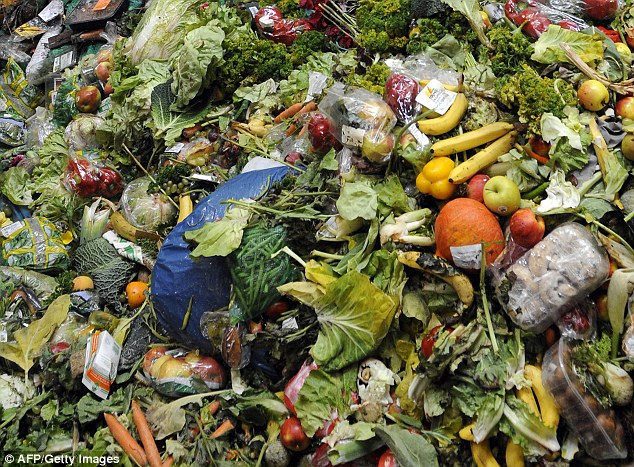 Food waste, Food industry, prevention, circular economy food waste, poverty, hunger, human rights, waste prevention