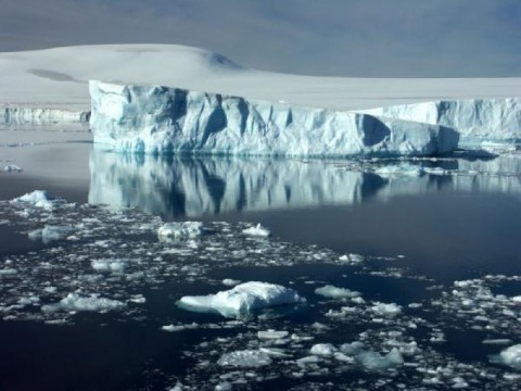 Global warming released 400 icebergs in a week!